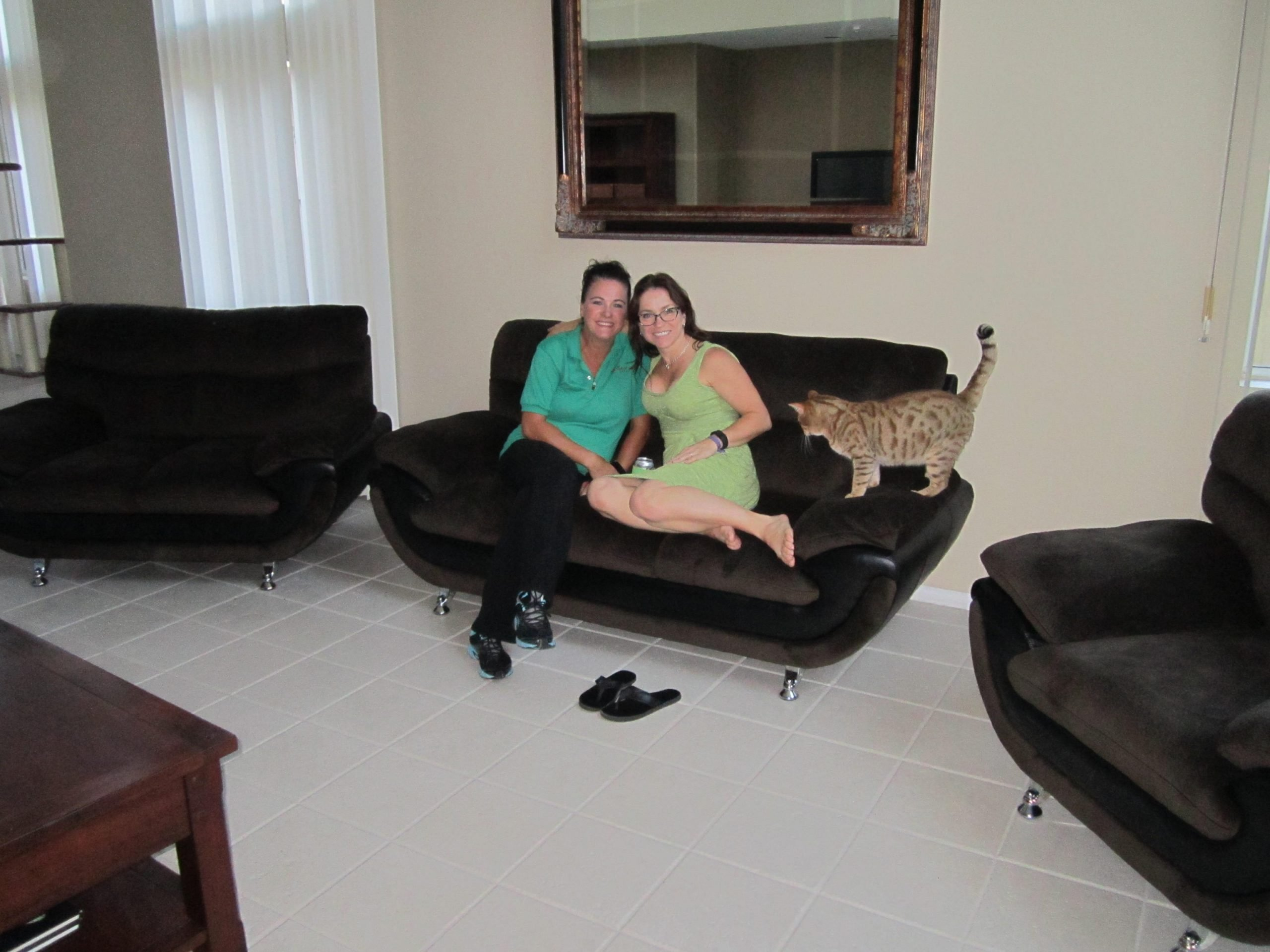 Read more about the article Carrie's Brown Microfiber Sofa Collection Delivery and Assembly